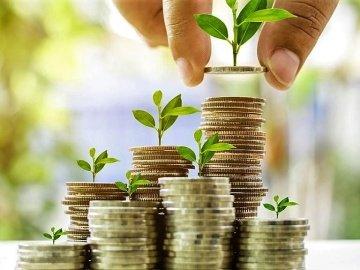 Плюсы и минусы банковских вкладов. В чем разница между депозитом и вкладом?